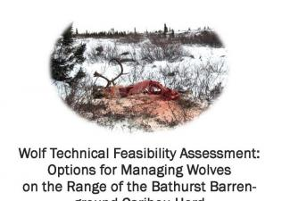 Wolf Feasibility Assessment Report Cover
